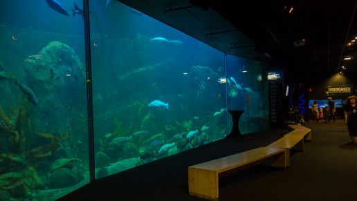 Universeum Science Museum, Gothenburg - Aquarium