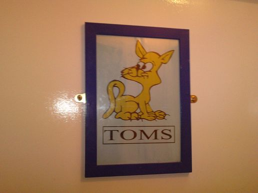Toms v queens. I  need toilet y so confusing ?