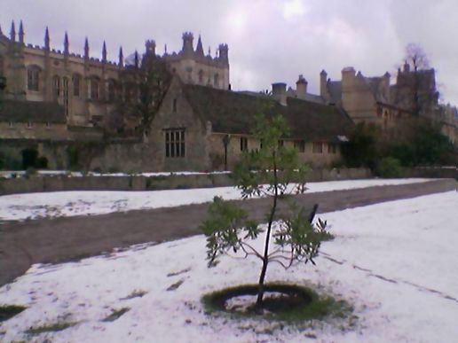 Christ Church college in the snow