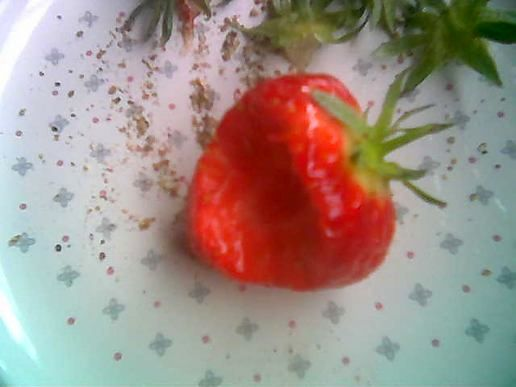 An English Strawberry