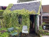 Allotment bothy, NVG, The 'Shields