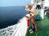 A dog's first sea voyage