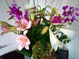 Lily, Orchid, Lily, Hydrangea