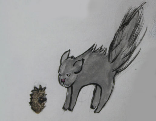 The Squirrel and The Pinecone