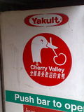 Duck Flavored Yogurt