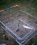 Lovely... a dead fish in a trolly in the park