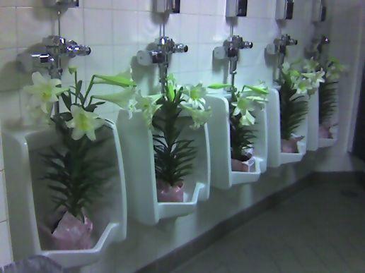Best smelling bathroom ever. Best smelling bathroom ever   at Dangerous Goods Kiosk