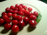 The First Sweet Cherries From My Garden