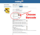 How to make your moblog feel more like yours.