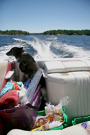 annie loves the boat, and up north
