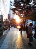 Sunset on the street