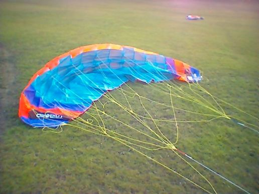 New Kite Day...