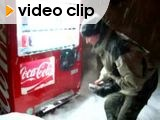 Vending Machine in the snow