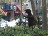 Topiary Rex Attacks Upper West Side